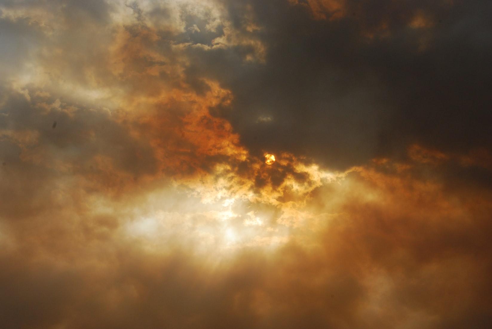 Нисхождение во ад. Почему Бог допускает болезнь и смерть детей? — Про Паллиатив